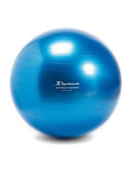 Minge fitball 65 cm
